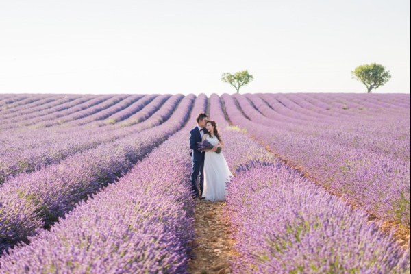 elegant lavender couple