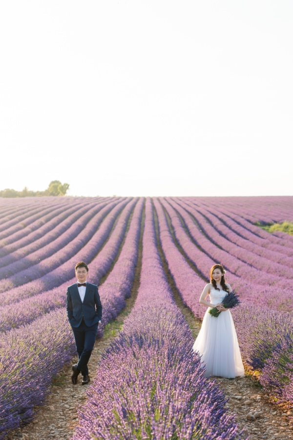 lavender france couple