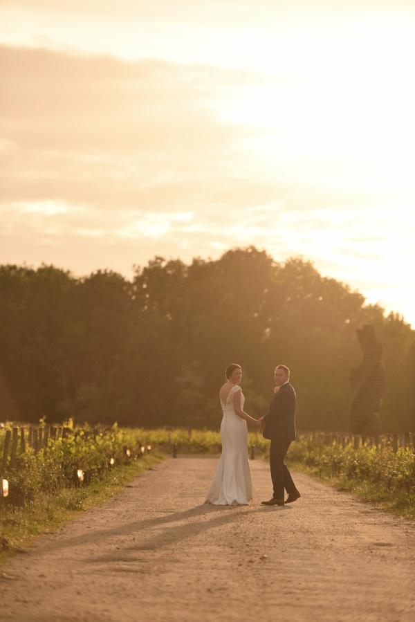 sunset vineyard wedding