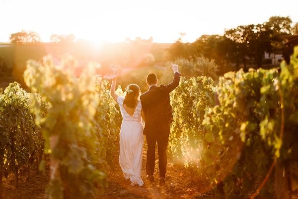 golden hour vineyard photos