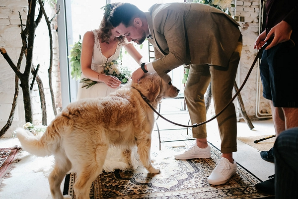 furry wedding guest