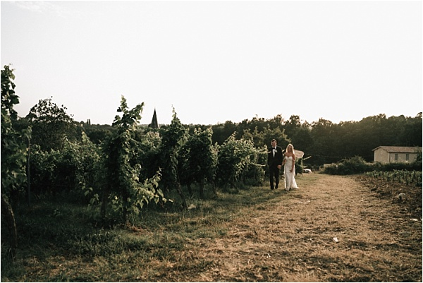 Stroll through vineyards