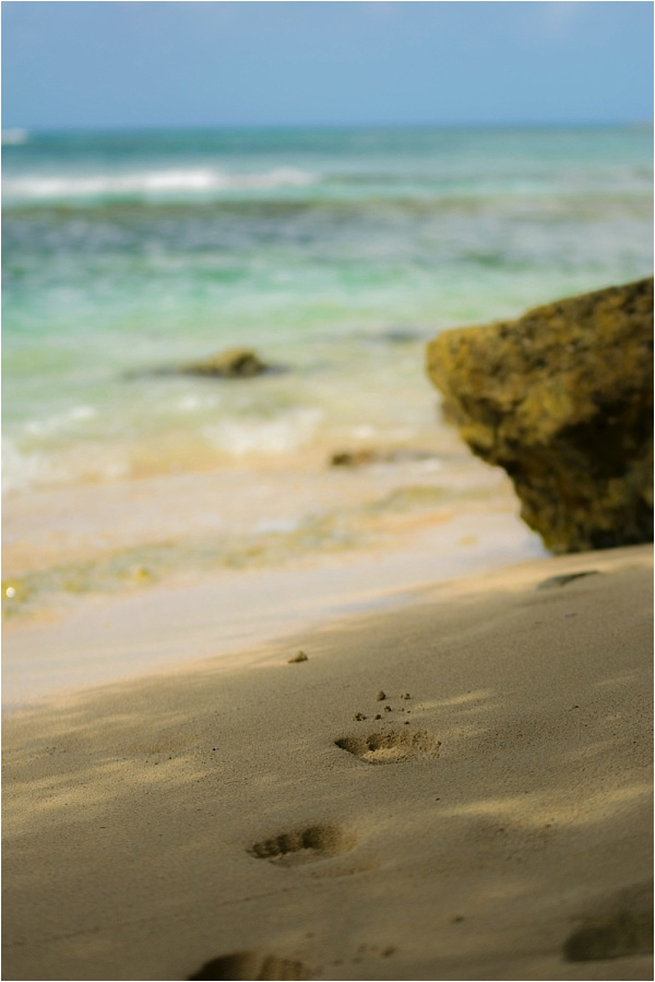 Beaches of Guadeloupe