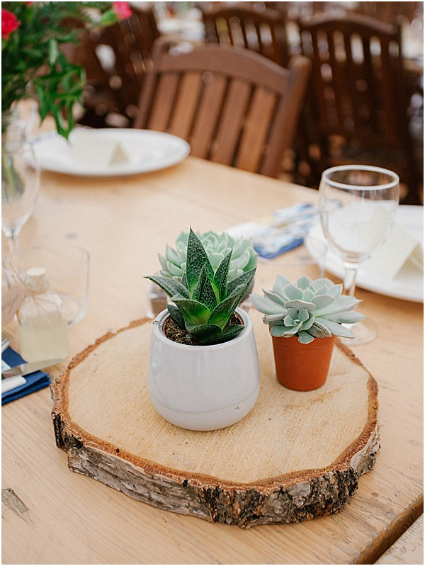 plants as wedding table centres Images by Alexander J Collins