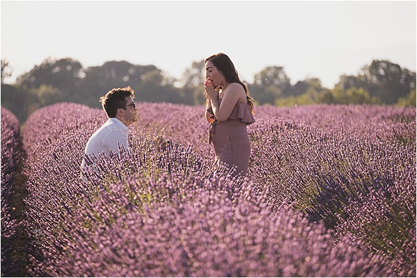 Proposing in a Lavender field