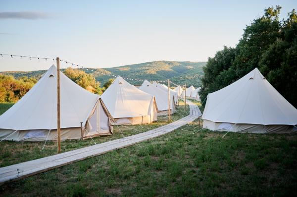 Cotton Wedding Tents in the Lavender Meadows of Domaine de Bres
