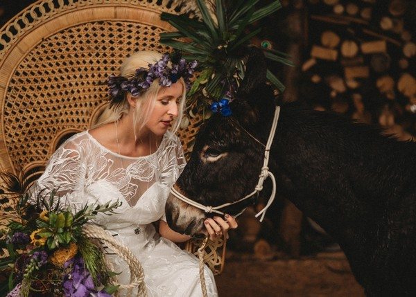 bride holds the reins of a brown donkey