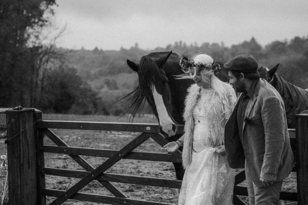 black and white image of bride and groom standing by paddock gate with black shire horse