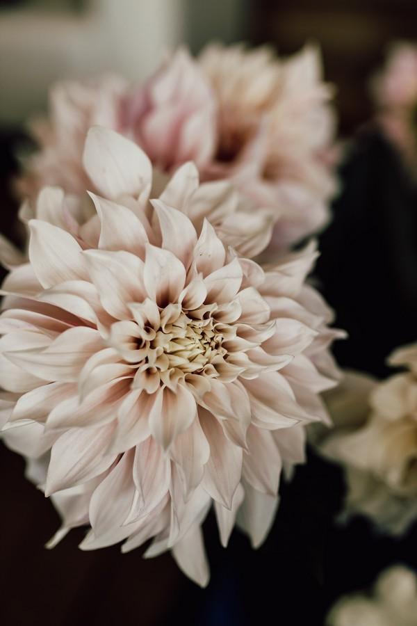 Les Images de Tom Styled shoot Florals 001
