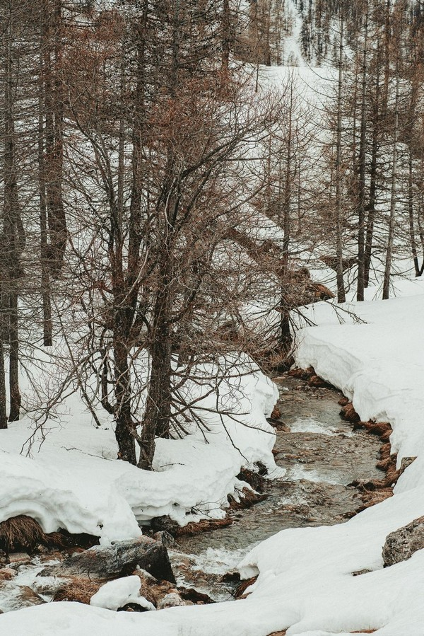 Winter Inspiration (44)